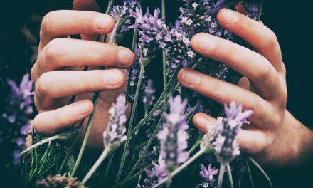 Naturopathie : une définition générale