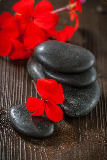 esprit critique et zen